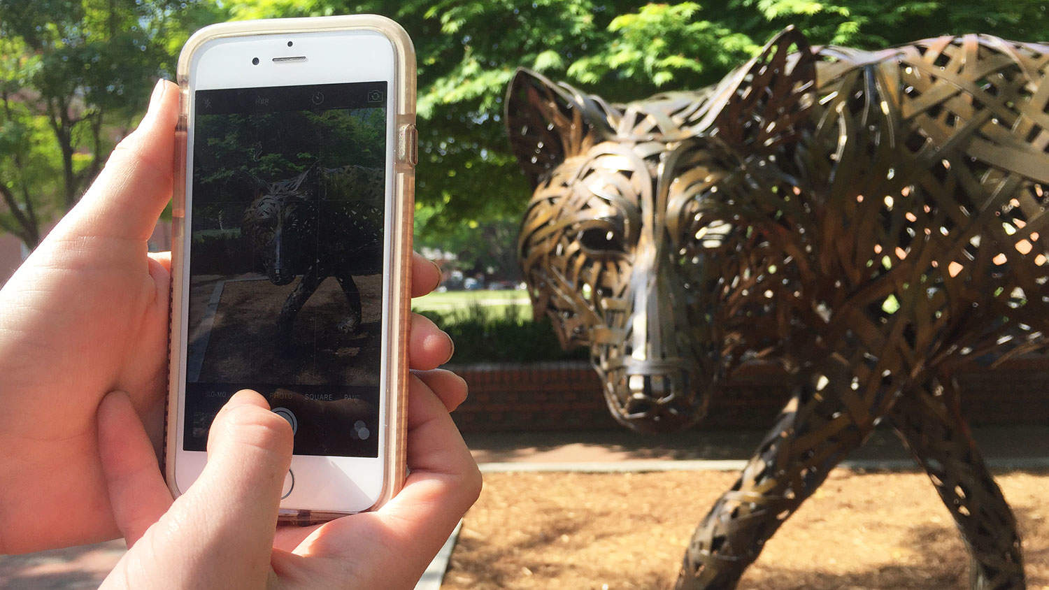 An NC State social media specialist captures an image of Wolf Plaza.